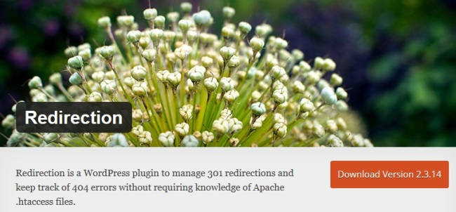 Redirection-WordPress-plugin