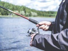 Les meilleures applications de pêche sur Android
