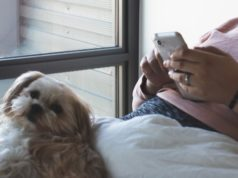 Les applications pour animaux de compagnie sur Android