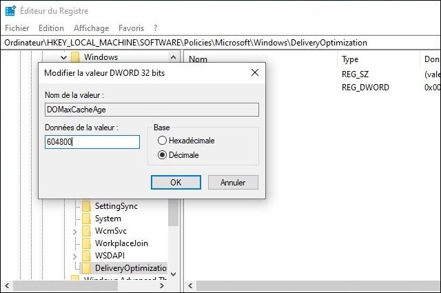 Cache optimisation de la distribution Windows 10